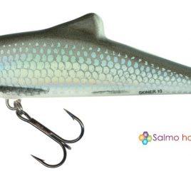 Salmo SKINNER 10cm 13gr – HGS holo grey shiner