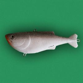 Kikosh Glavinjara – Silver