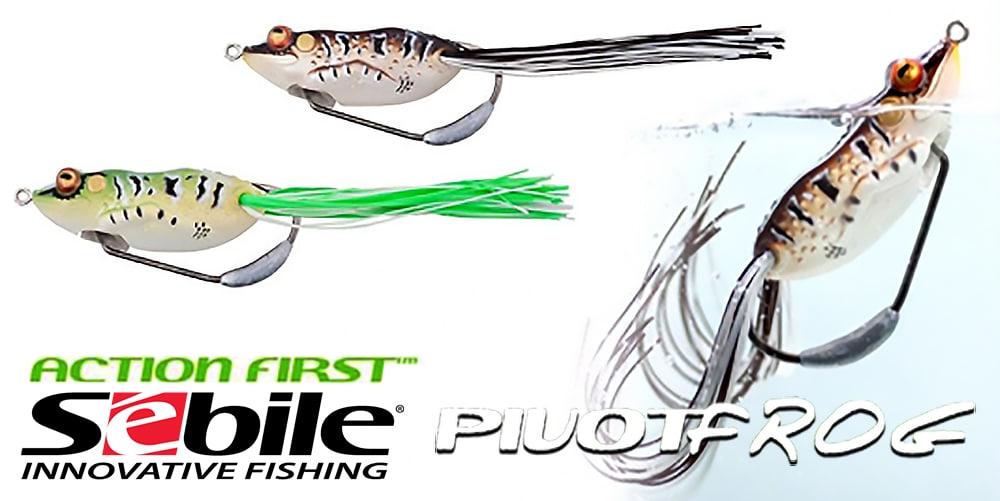 pivot-frog-banner