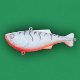 Kikosh Glavinjara – WT